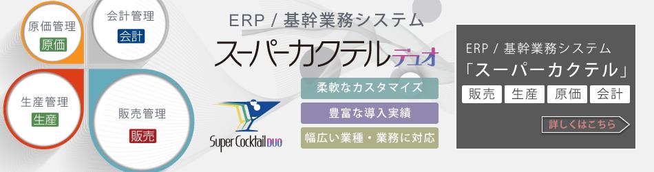 ERPパッケージ / 基幹業務システム
