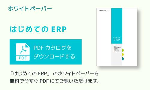 ホワイトペーパー(ERP)